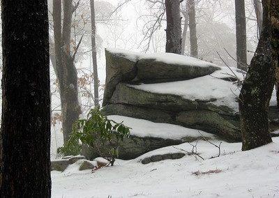February 1 Snow 6