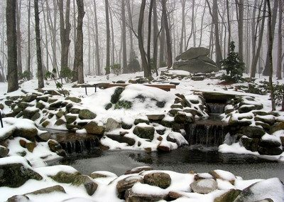 February 1 Snow 7